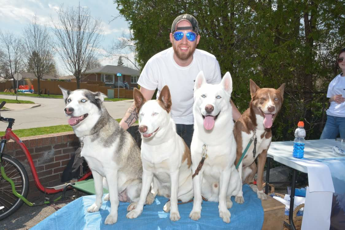 Four huskies sitting on a table with thier owner tyler standing behind them wearing a white t-shirt and sunglasses.