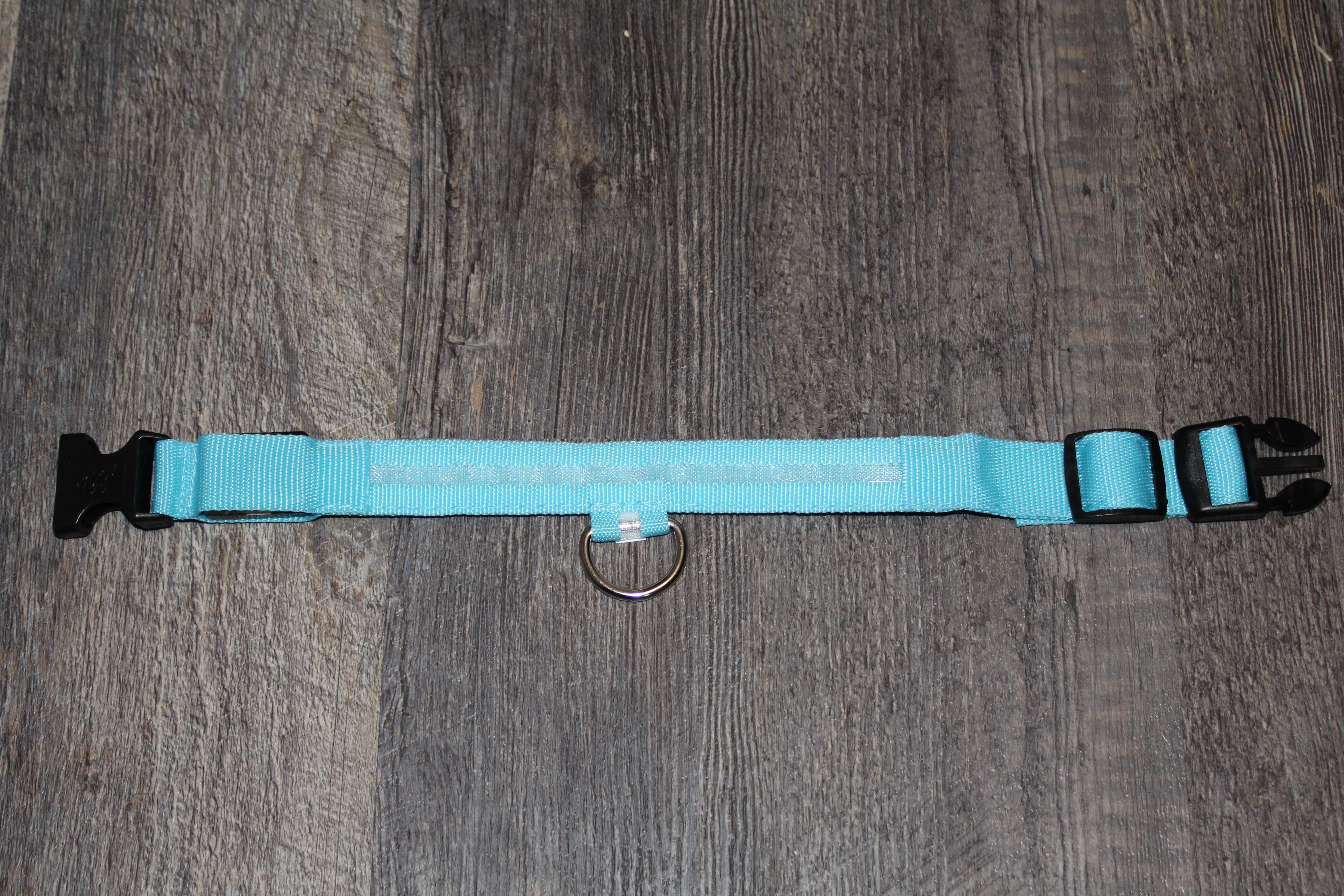 product image of a blue glow collar for dogs