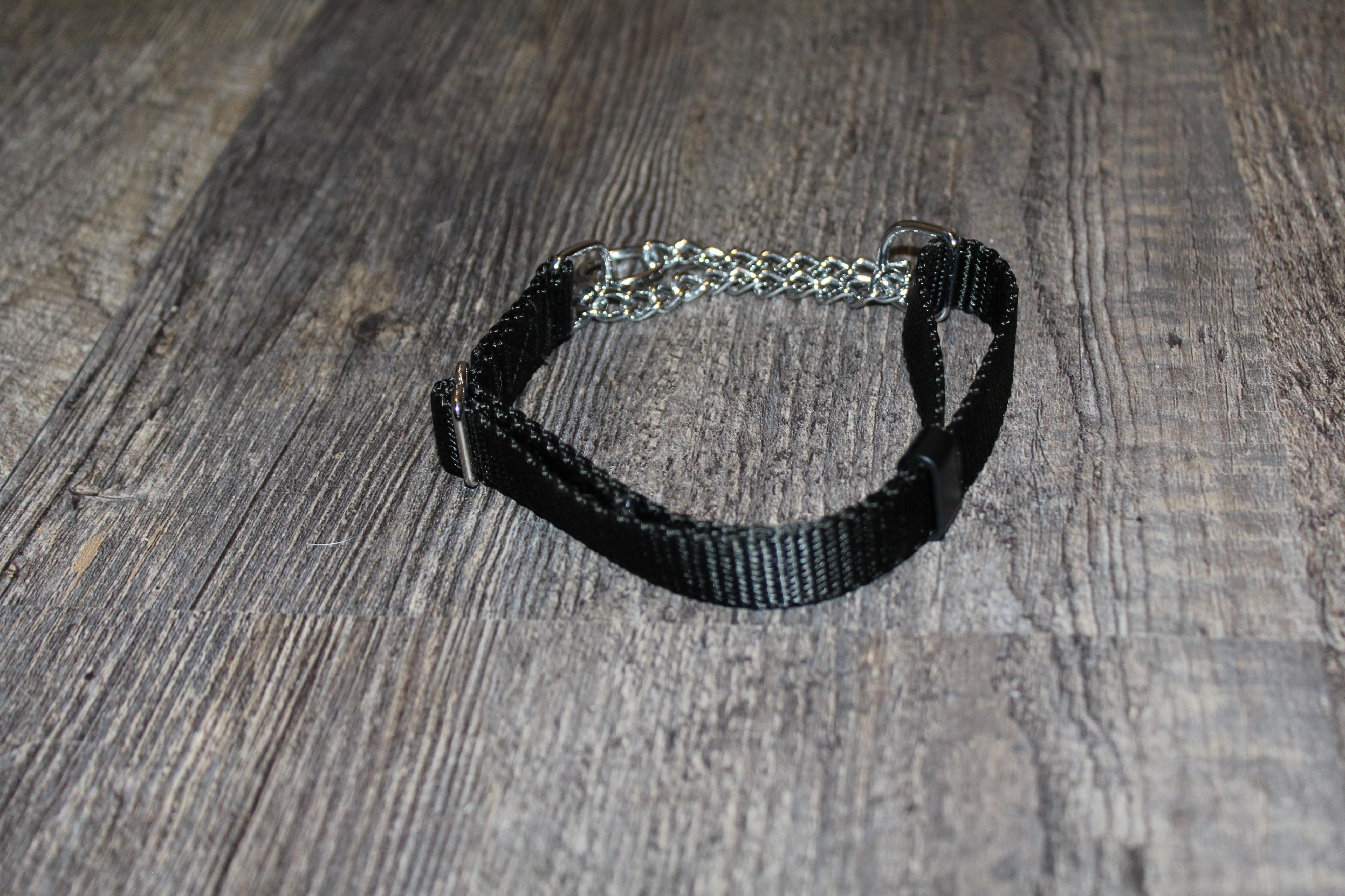 product image of a martingale for dogs